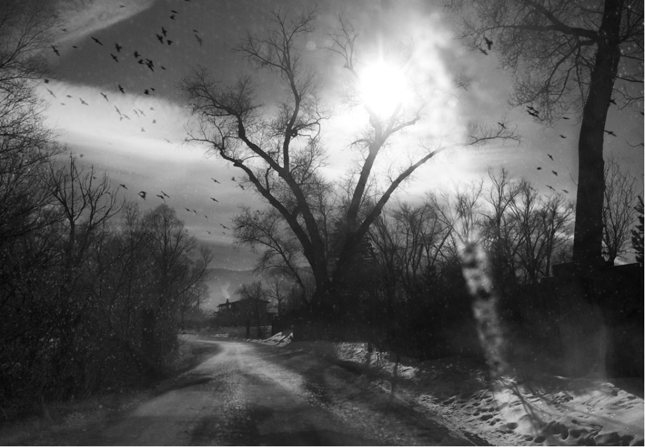 Winter's Breath, 2014  by Angela Bacon Kidwell