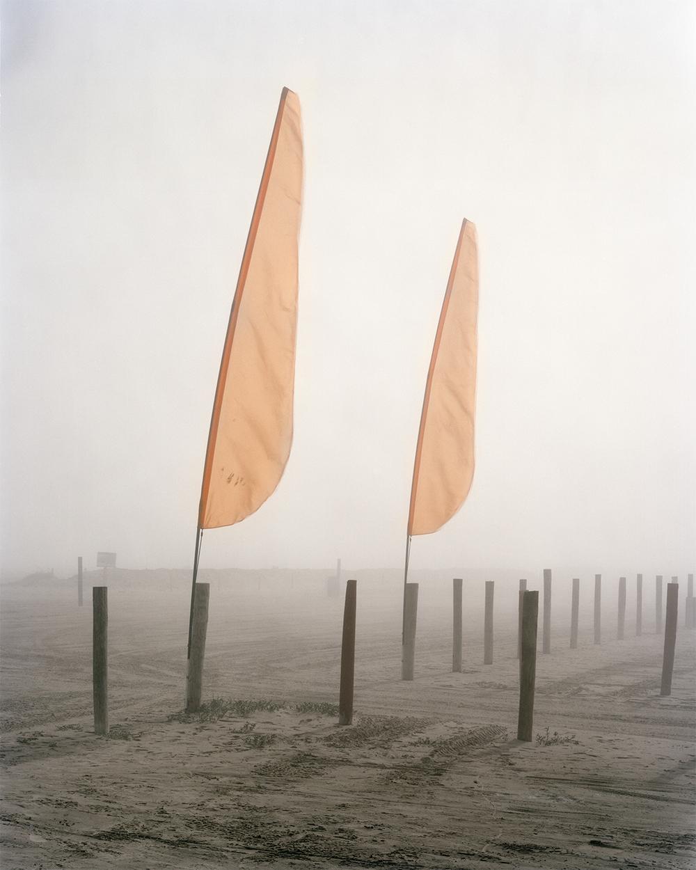 Fog , 2015