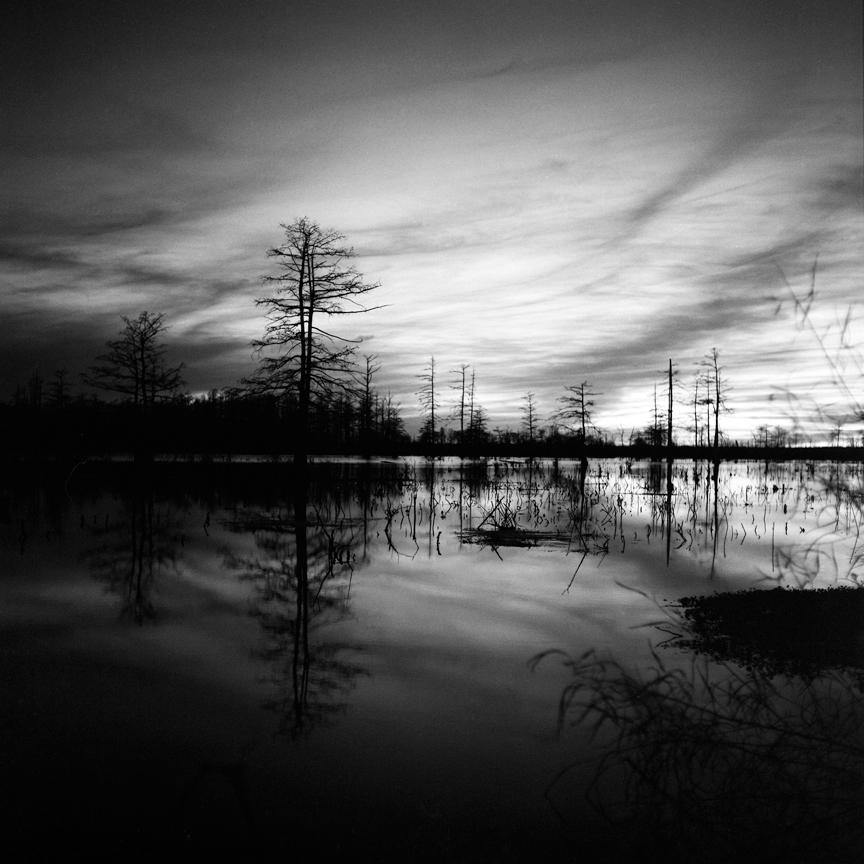 Brandon Thibodeaux's haunting landscape image