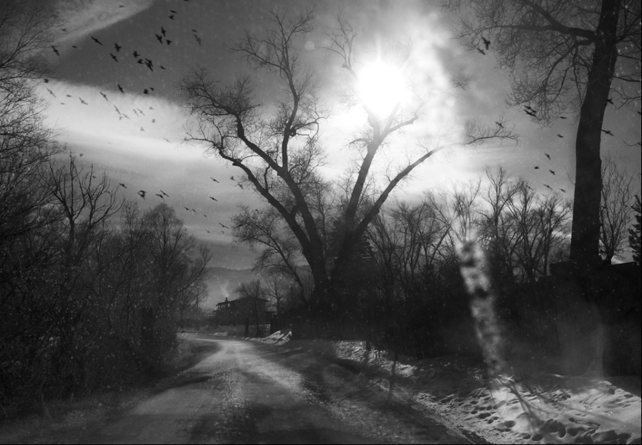 from the series  Home by Nightfall  by Angela Bacon-Kidwell