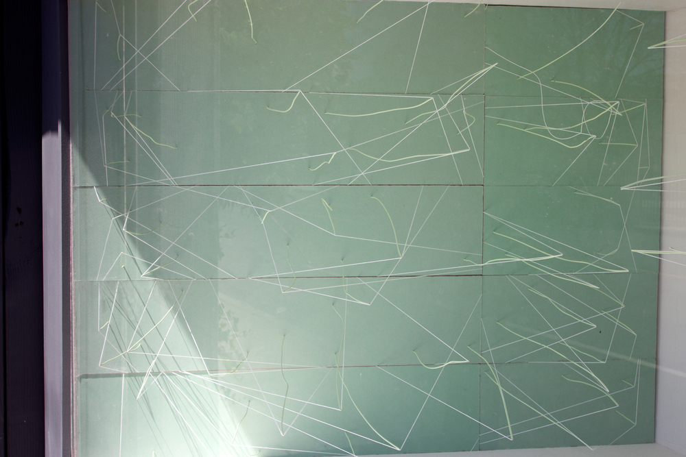 RSP 2 part 3: Outline to Form  2015  Greenboard panels, wire with spray paint, and string