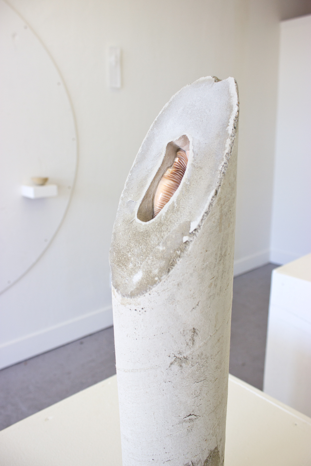 Untitled (concrete shell, cylinder)  2015  Cast concrete cylindrical section, embedded decorative shell   30 x 4 inches