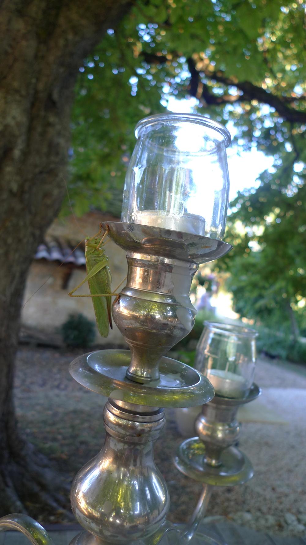 chartreuse le cariol - dordogne, france