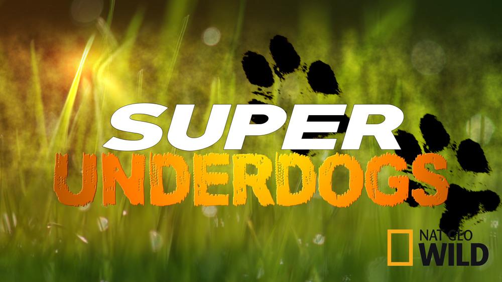 Super Underdogs_NoIndigo.jpg