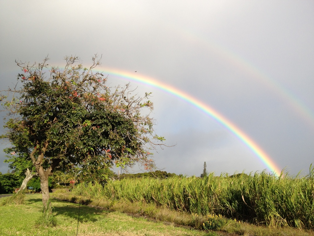 Upcountry tends to have cooler temperatures and is more likely to have rain and rainbows.