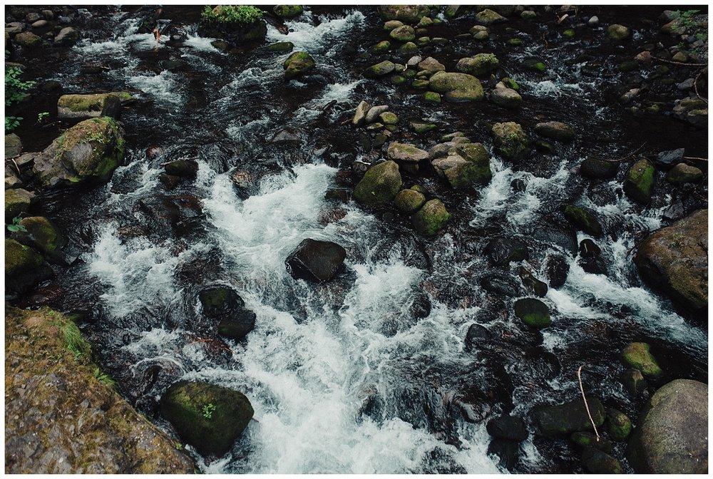 edenstraderphotography_0703.jpg