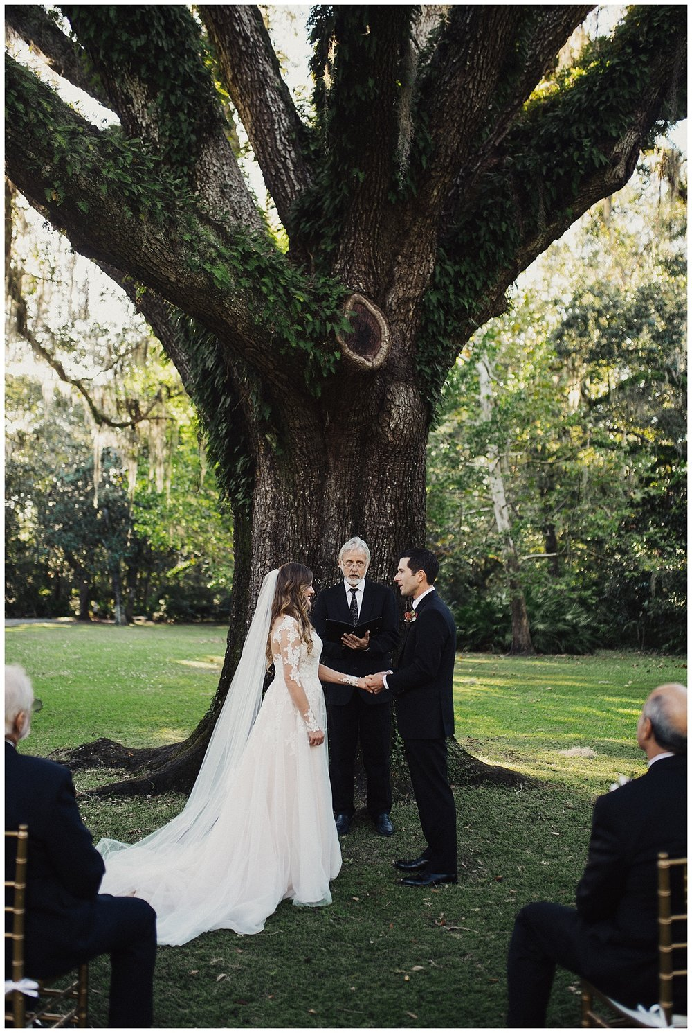 Wedding under the Wedding Tree