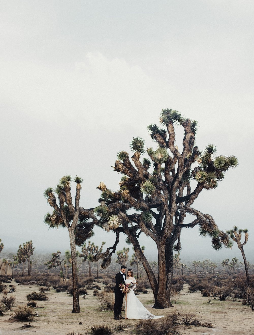 Boho California Desert Wedding