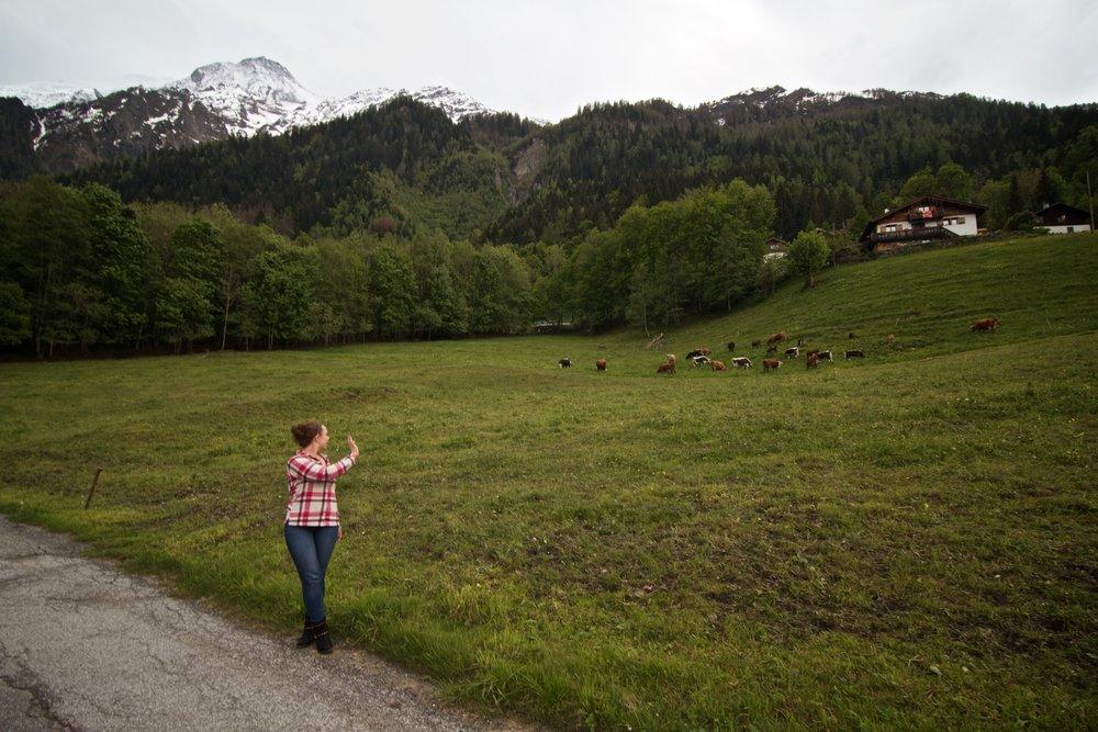 Alps 12.jpg