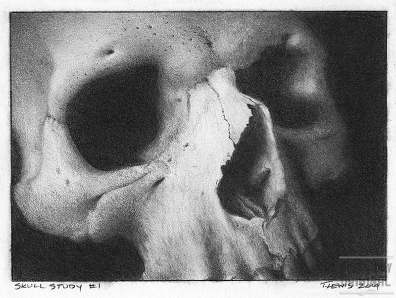 Skull1_1web.jpg