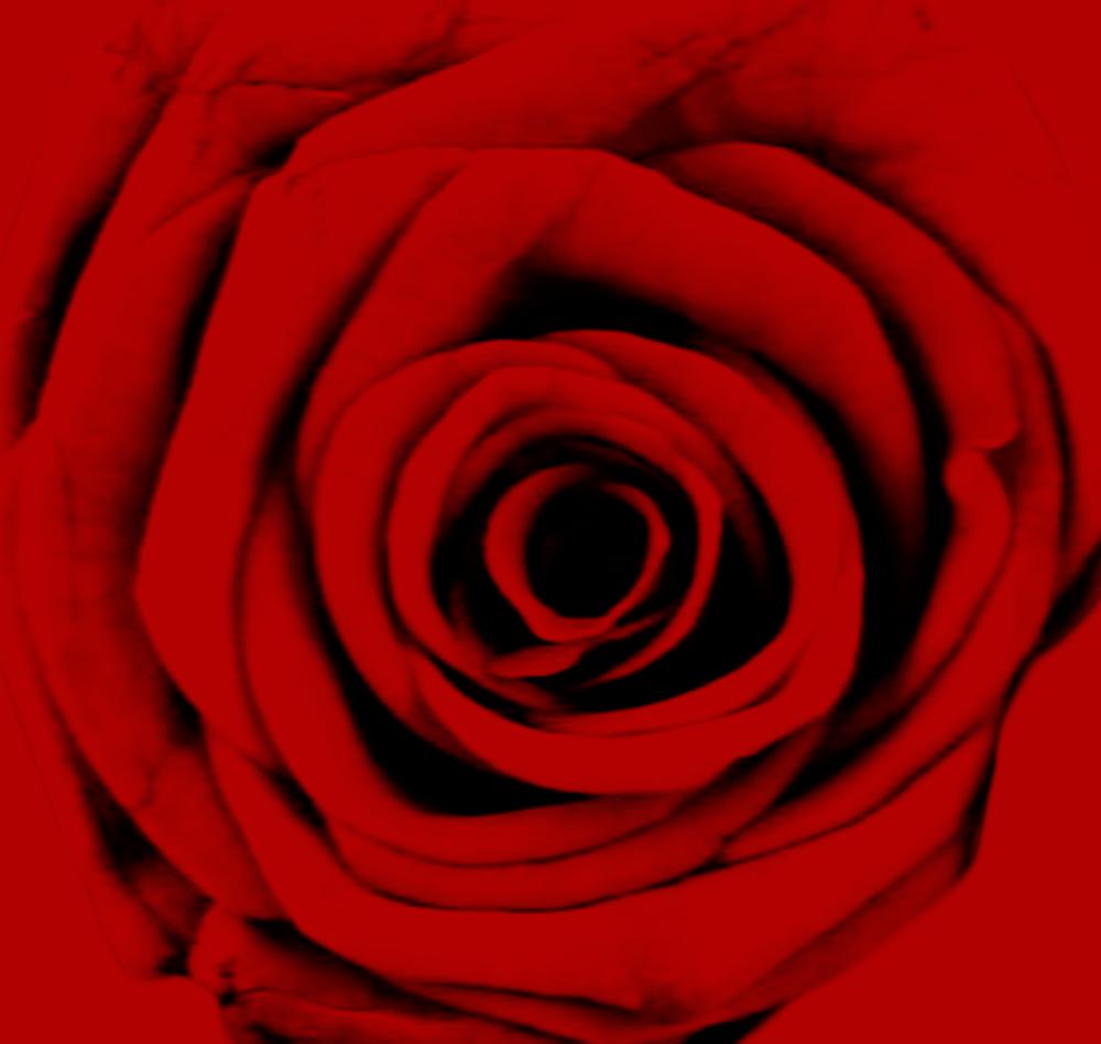 rosebud.png
