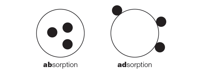 Dermalogica absorption vs adsorption.png