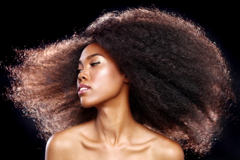 Beautiful Stunning Portrait of an African American Black Woman W