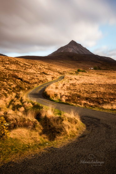 Road-to-Errigal-portrait2018-website.jpg