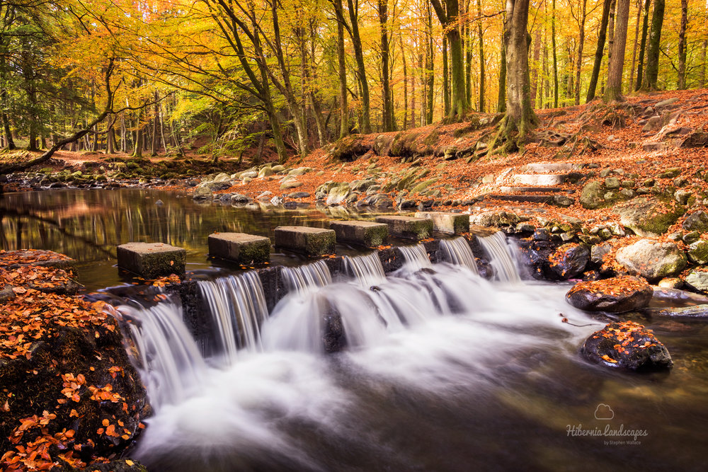 The-Stepping-Stones-2016-website.jpg