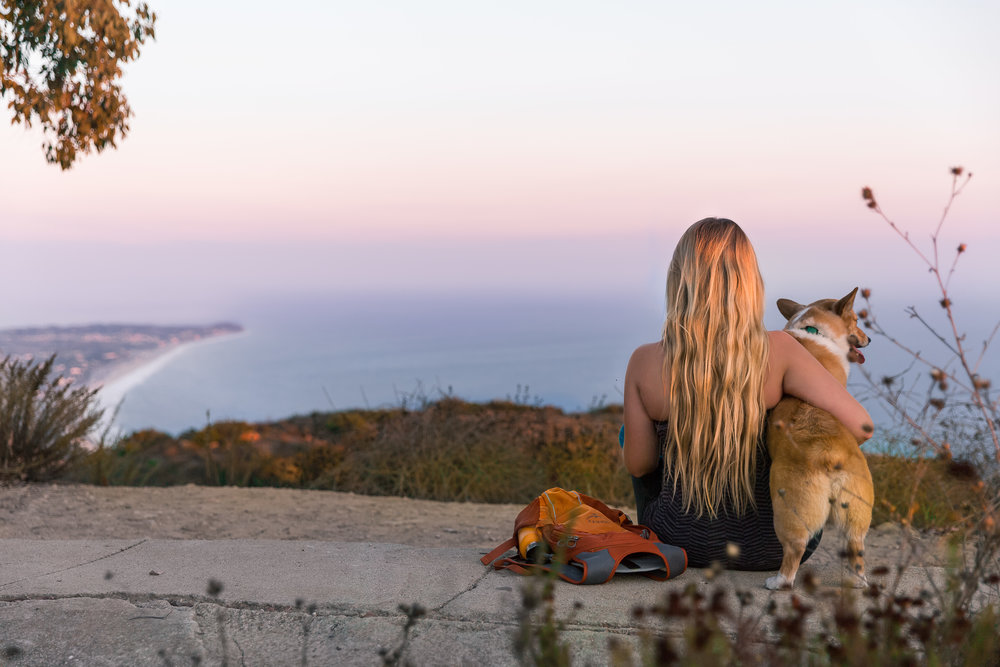 Charmlee Wilderness park - Charmlee boats over 500 acres, 8 + miles of family-friendly hikes, wildflowers, gorgeous sunsets and sweeping ocean views.