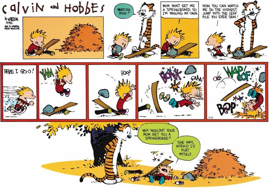 calvin-and-hobbes-someone-could-get-hurt-large.jpg