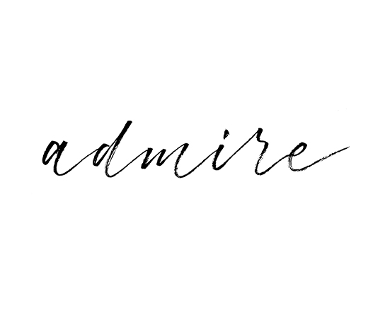 Admire | 100 Days of Lettering by Type and Graphics Lab | typeandgraphicslab.com