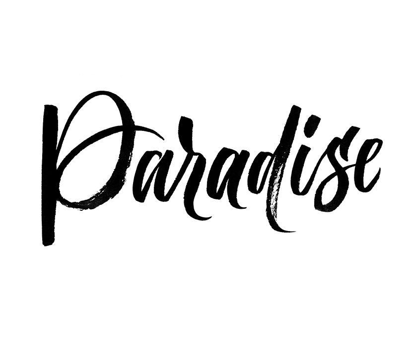 Paradise | 100 Days of Lettering |  By Type and Graphics Lab |  typeandgraphicslab.com