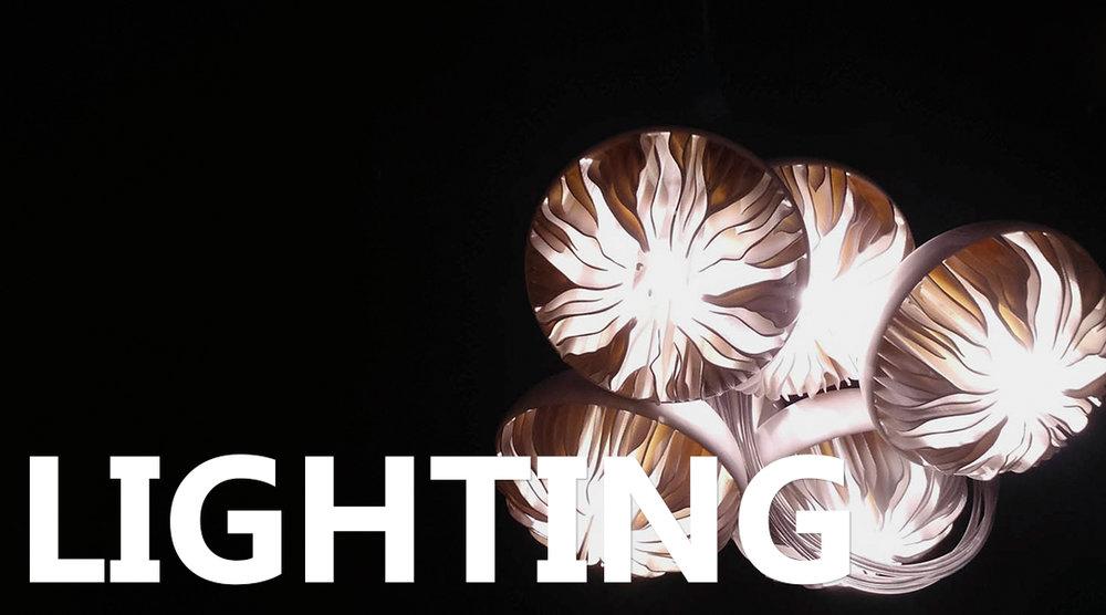 James Plant Lighting Title Image.jpg