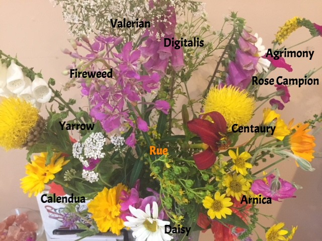 The Anatomy Of A Bouquet At Ssbp Seattle School Of Body Psychotherapy