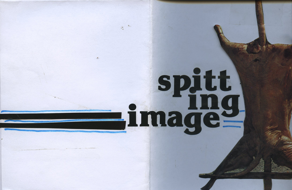 Spitting Image Cover and Back.jpg