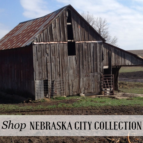 Shop-NE-City-Barn-Homepage.jpg