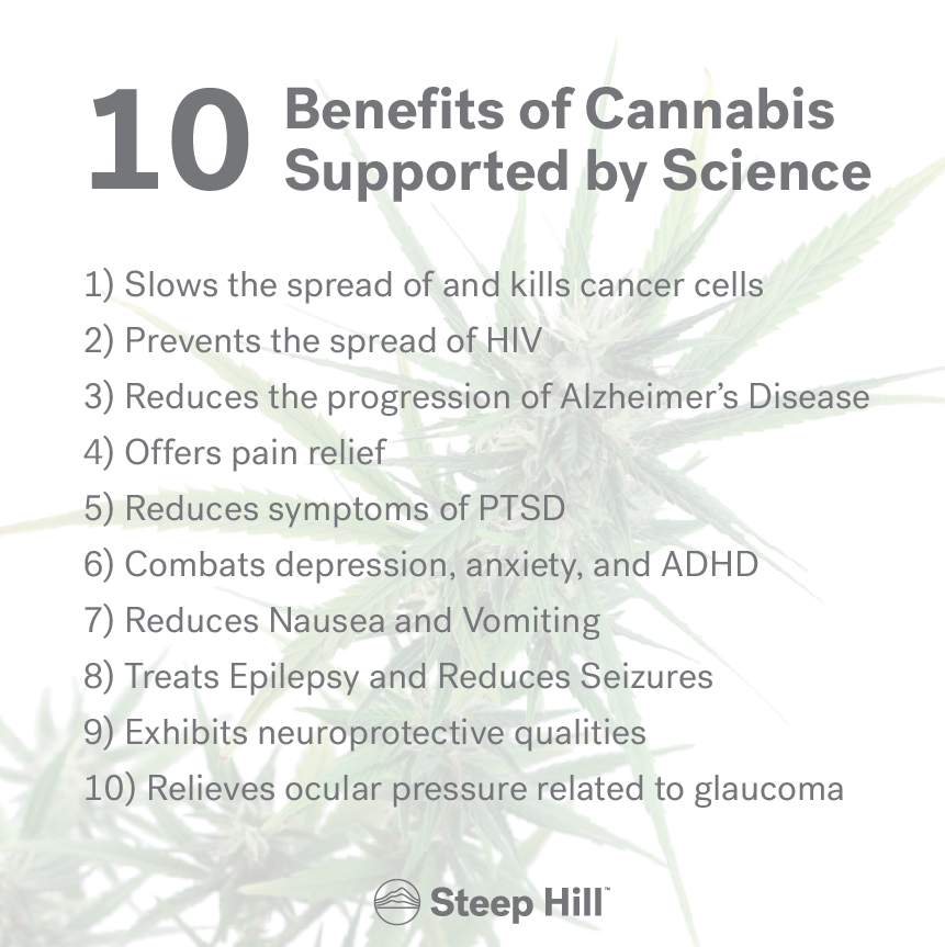 10 Benefits of Cannabis Steep Hill.png