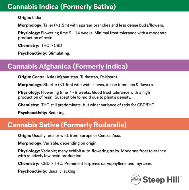 Cannabis Subspecies Steep Hill.png