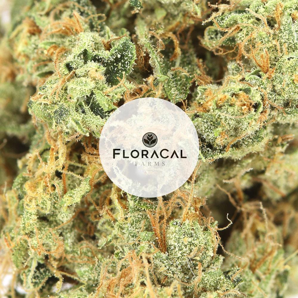 RVR-Flower-Floracal.jpg