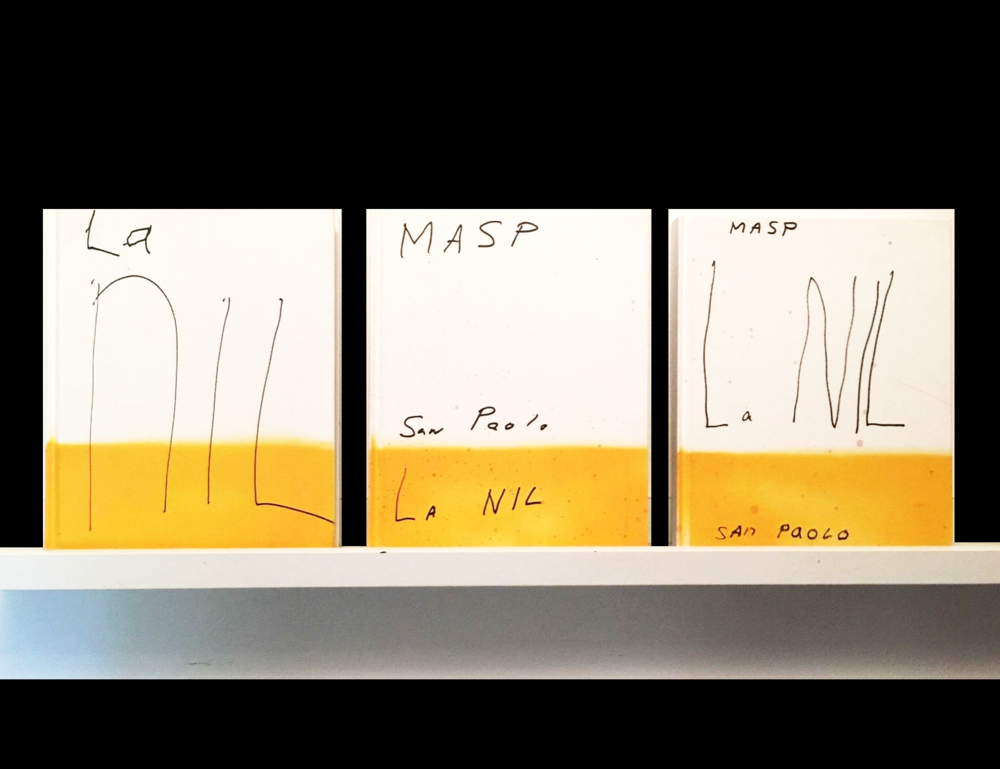 """La NIL"",  2014, set of 3 UNIQUE painted book editions."