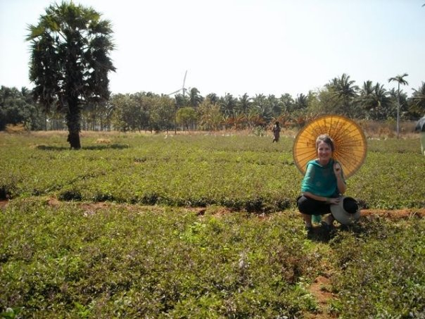 Evan in a field of Sacred Tulsi in Trivandrum, India, 2009. Photo by Niika Quistgard.