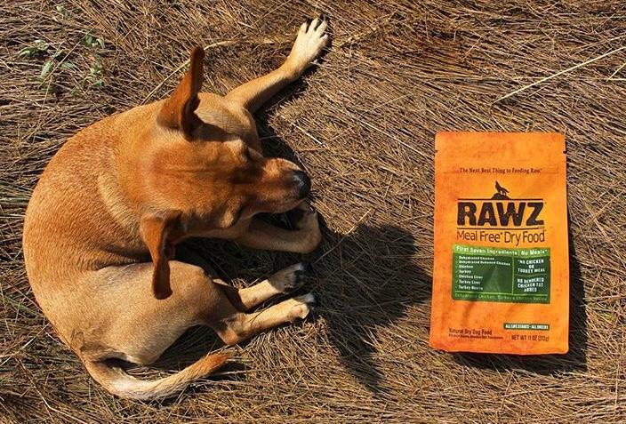 RAWZ+Dog.jpg