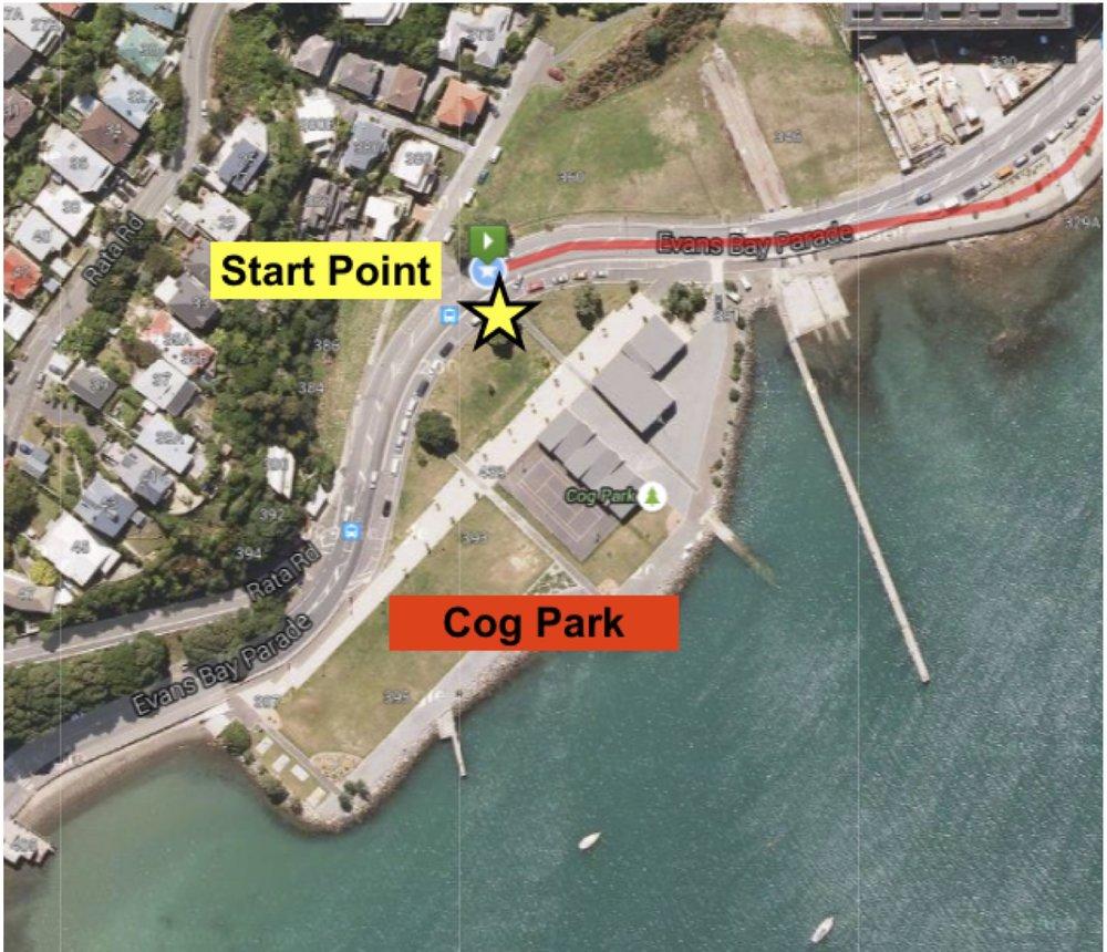 Cog Park Start Point