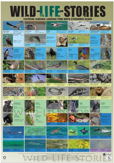 WIld Life Stories Poster