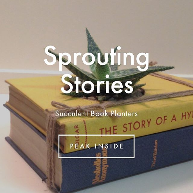 We're elevating our web presence and refreshing our face for the people we love. You. #SproutingStories #Succulents #BookLovers