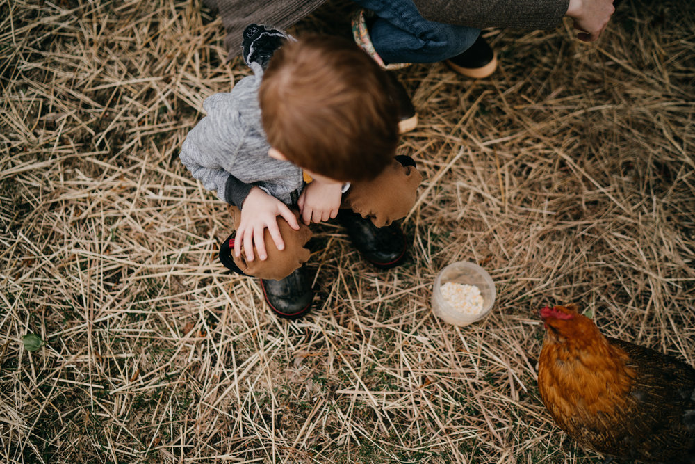 anchoragefamilyphotographer64.jpg