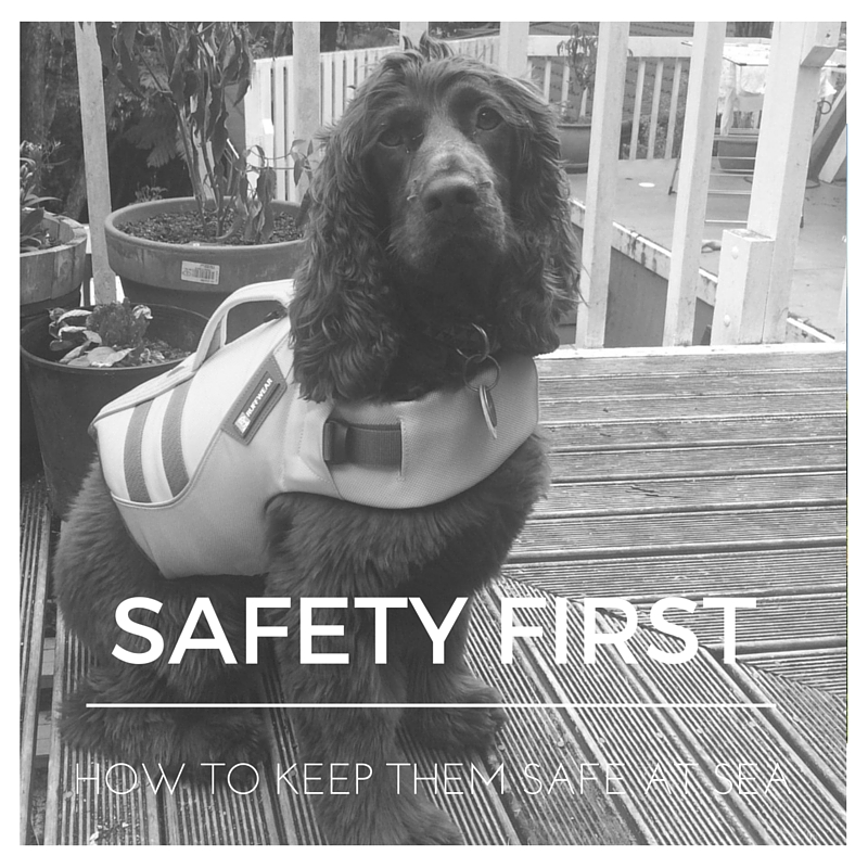 Alba looking dapper in a well-fitted, high quality life jacket