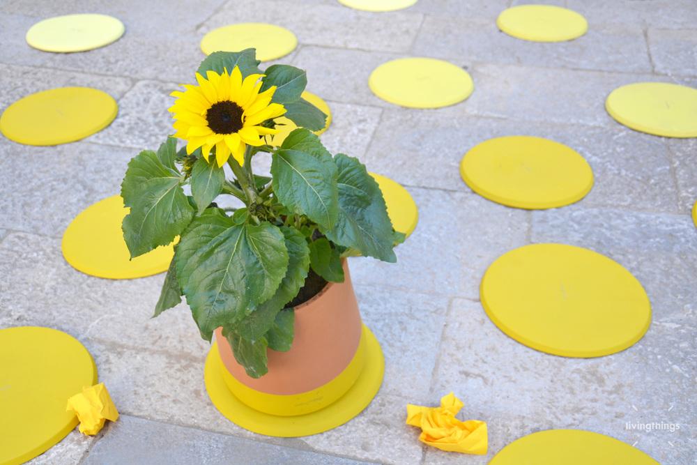 Voltasol-Girona-temps-de-flors-2014-03.jpg