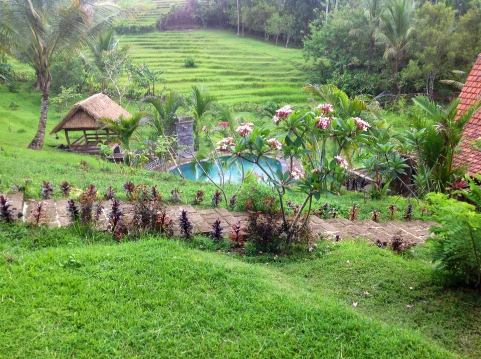 Pure_Immersions_Collaboration_Retreat_Bali_Lush