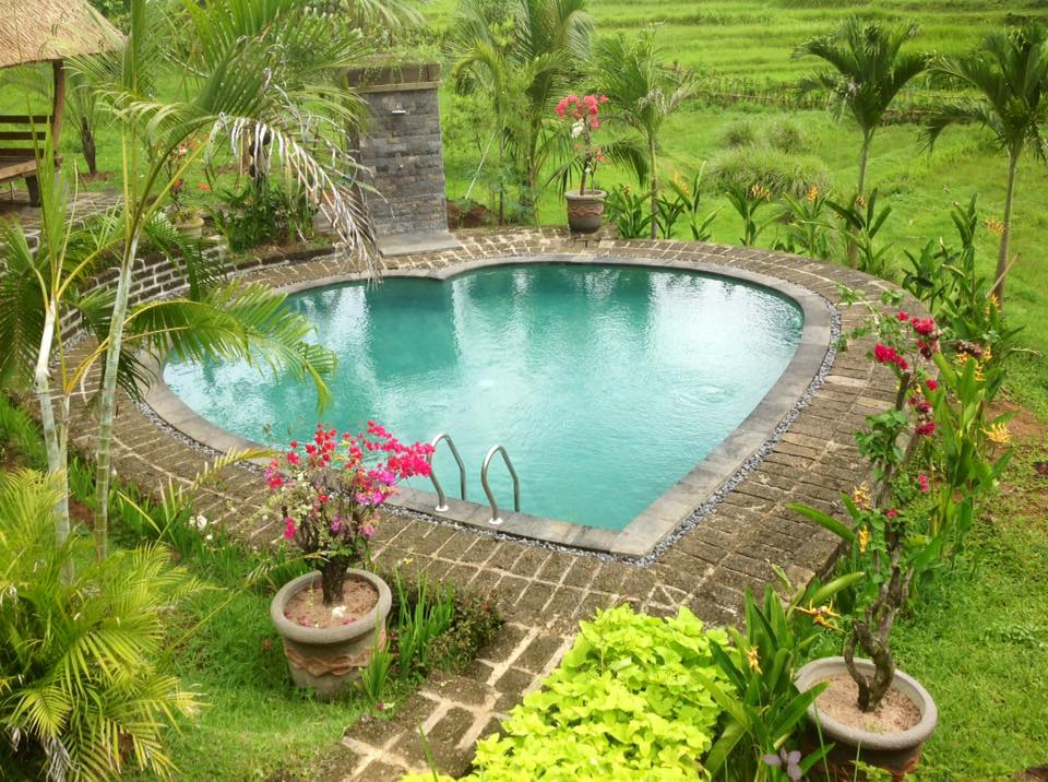 Pure_Immersions_Collaboration_Retreats_Bali_Lush
