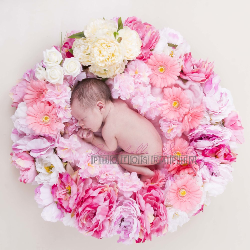 newborn photography walton on thames surrey flowers annabelle smith photography.jpg