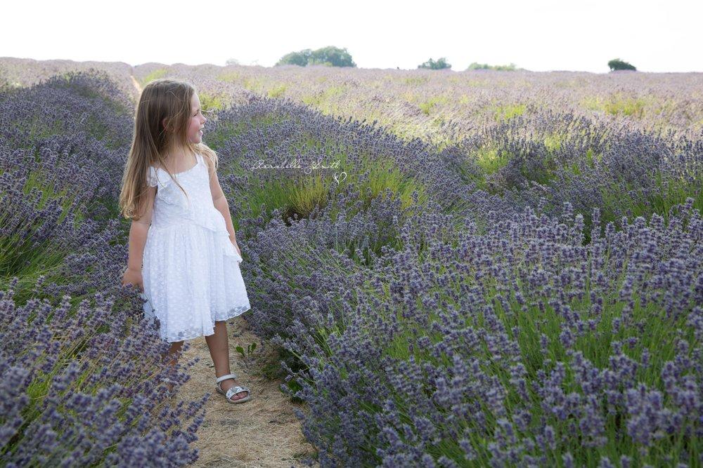 Lavender Field Photography surrey4.JPG