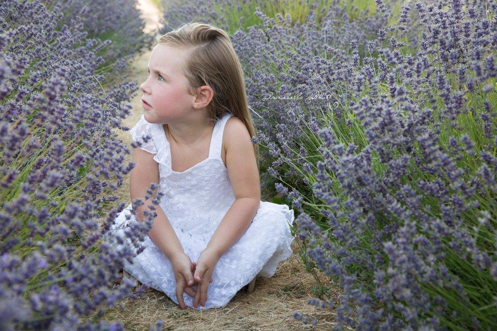 Lavender Field Photography surrey5.JPG