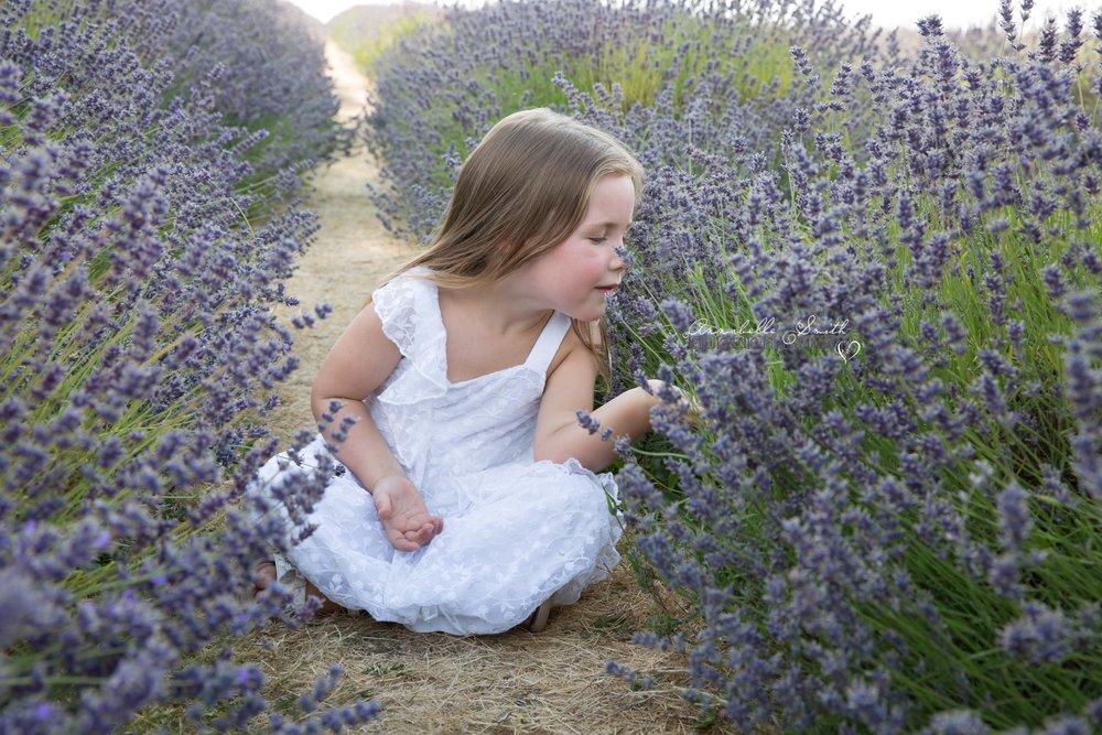 Lavender Field Photography surrey8.JPG