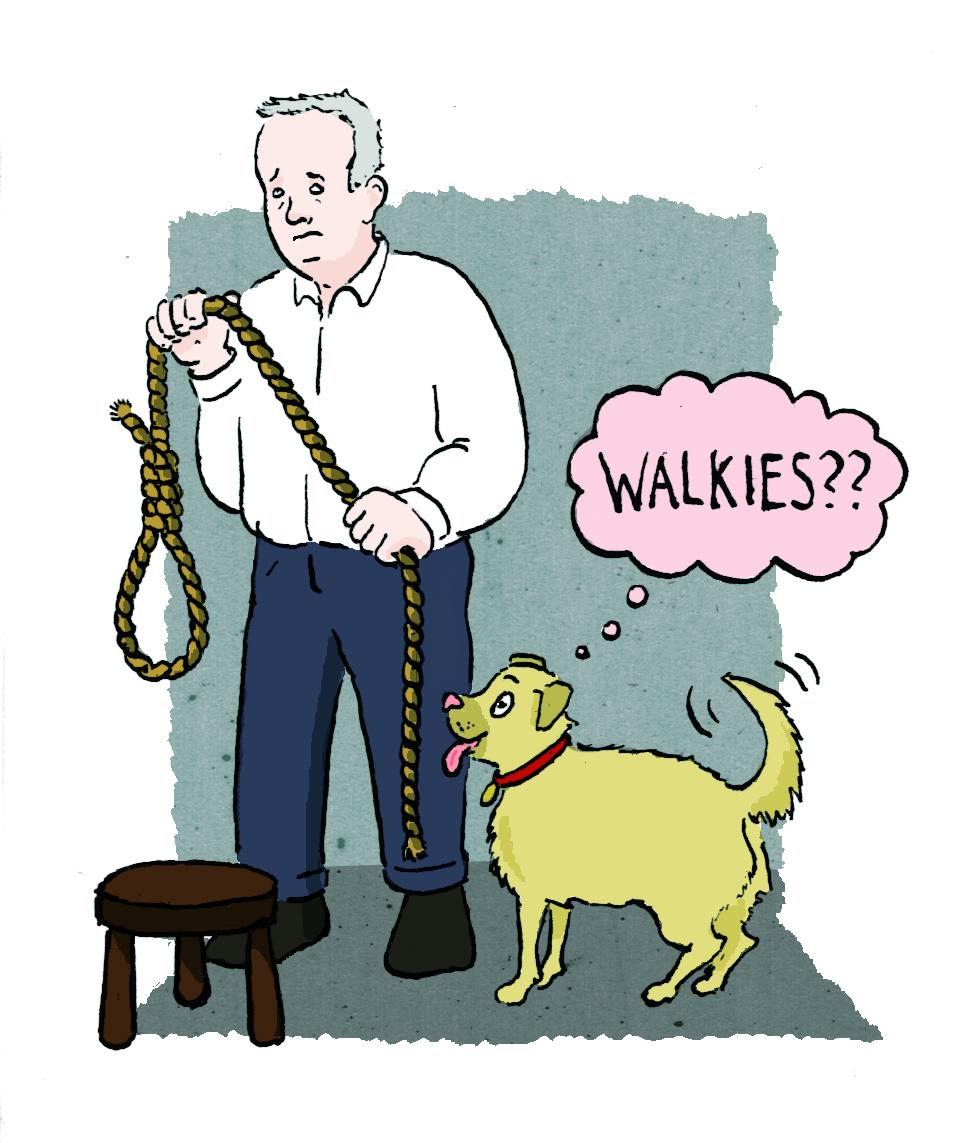 walkiescolor.jpg