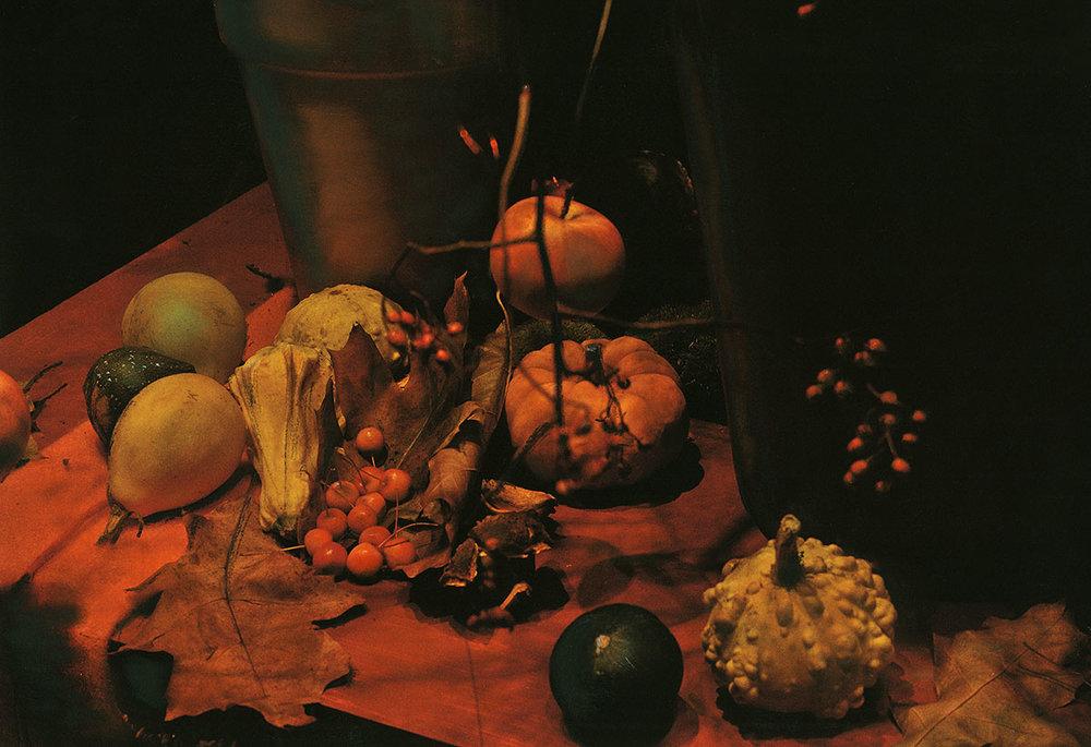 Herbstliches Still