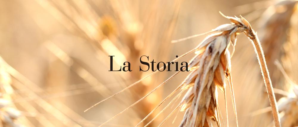 Hoje, a história do macarrão é entrelaçada com a história da publicidade, graças à qualidade que os fabricantes continuam a melhorar com o tempo. Mas antes de virar o símbolo da Itália no mundo, a história da massa começa quando o homem deixou a vida nômade e se dedicou à agricultura, começando a plantar trigo.. la storia