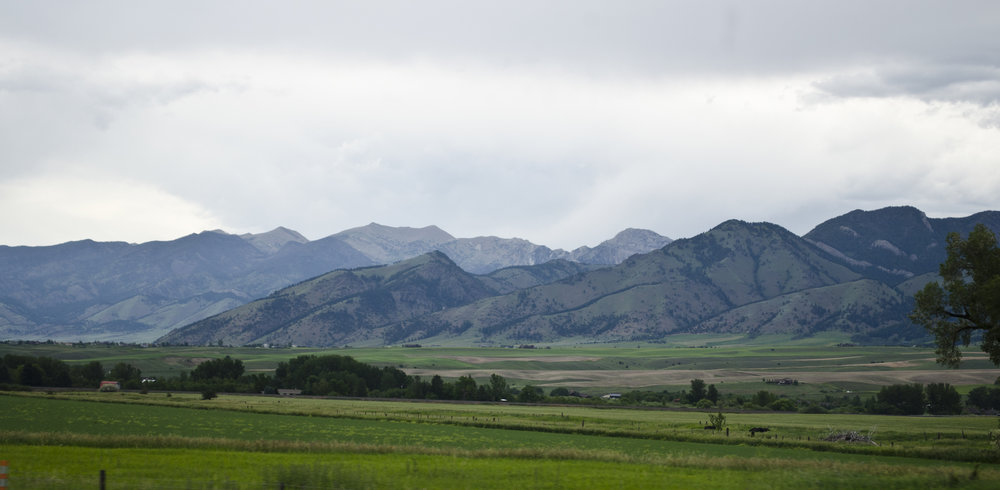 Looking_NE_at_Bridger_Mountains_-_Montana_-_2013-07-07.jpg