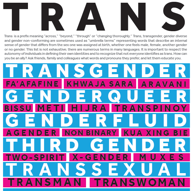 You can download IOM's trans inclusiveness poster here